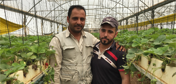 Rajai and Musaab Fayyad in their greenhouse at The Brothers Farm, Zababdeh, West Bank, May 3, 2016. Marda Dunsky for the Cairo Review