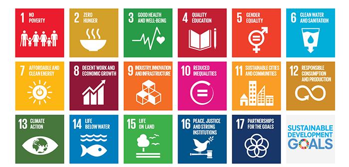 SDG Poster, UN website.