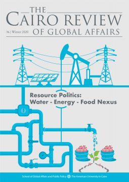 Resource Politics: Water-Energy-Food Nexus